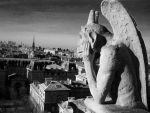 Gargoyle at Notre Dame by athanasiaa