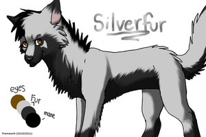 SilverFur by FireMoon9