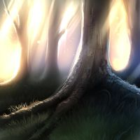 Magic forest = wip by ryky