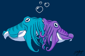 Cuddlefish by Chewilicious