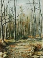Autumn Forest by Lidmar