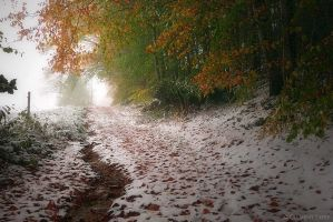 Winter has come too soon by LG77