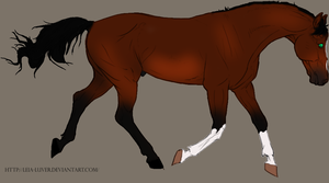 Celtic Stallion by ReeseS8