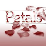 M-Petals by M-brushes