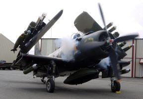 Skyraider Startup by shelbs2