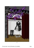 The Secret Stash - Cover by RookBartly2