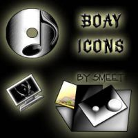 Boay Icons by smeetrules