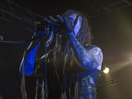 Amorphis, Nosturi 02 by Wolverica