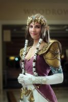 Katsucon 2015: Sample shot 8 by Henrickson