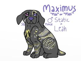 maxi :) by wolfhailstorm