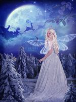 Fairy of the Christmas by alanleal22