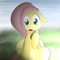Fluttershy found it by Lighting-Shadow