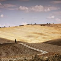 sole di toscana 3038 by bagnino