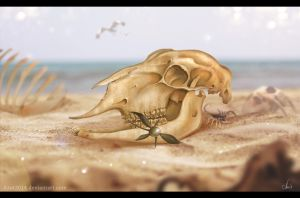 Sheep`s Skull by Azot2015