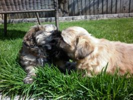 Play Time by Veronyak