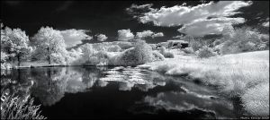 IR Pond by hquer