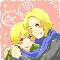 Hetalia: 'Cause It's Cold by himitsu-nk