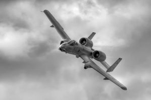 Warthog Flyover by aviationbuff
