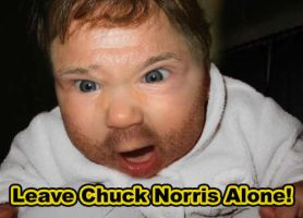 Leave Chuck Norris Alone by 3enzo