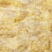 Ancient Wall Paper ... 5984 by DonnaMarie113