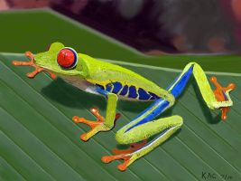 Red-Eyed Tree Frog by kennyc