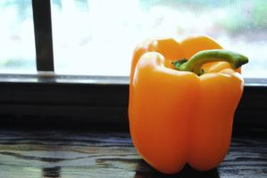 Foods: Orange Pepper I by ayanefujimoto