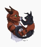 Savora and Fury by chill13