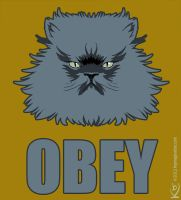 Colonel Meow Obey 2013 by Keymagination