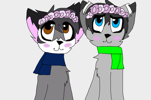 Flower crowns  by cheese4lifeyay