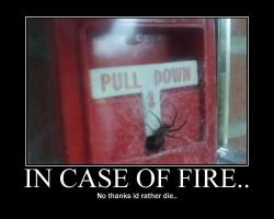 In case of fire.. by APH-Alfred-F-Jones