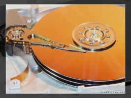 Hard Drive - PRINT by halley