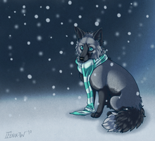 Baby its Cold Ouside by Fenix-W