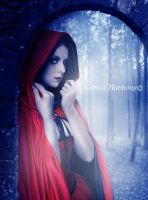 There Is A Wolf In The Forest by Celtica-Harmony