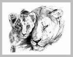 Lioness and Cub by Night-Sam