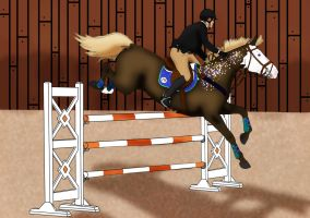 Padro Grand Opening Show - Show Jumping Class by Boggeyboo