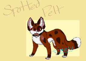 SpottedPelt Request by Shy-Storm