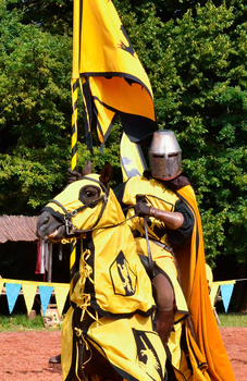France Yellow Knight 1 by chavi-dragon