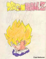DBZ 2 by bluefire4000
