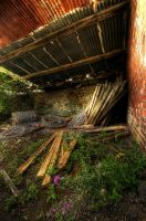 The Woodshed by taffmeister