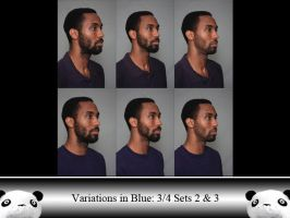 ViB 3/4 Sets 2 and 3 by Ahrum-Stock