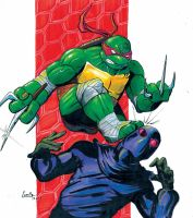 Raphael by camillo1988
