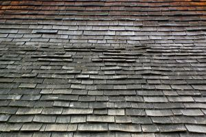 Cedar Roof Dark 2 by Limited-Vision-Stock
