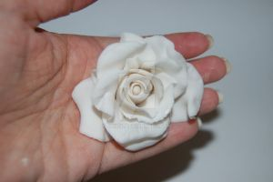 Gum paste Rose by JanJL