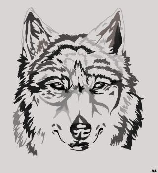 Wolf by Artisticgirl18