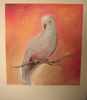 Boo the Parakeet by bclifford