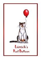 Picture Book Luttich's Balloon by wolfanita