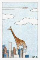 Giraffes are very tall... by myp55