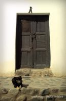 The dog and the door by SeeTheMagic