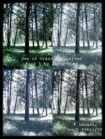 Sea of Grass Exclusives 5 by Jenna-Rose