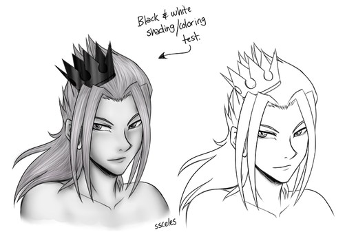black and white test by ssceles